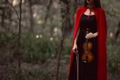 Fotografia ritagliata vista di elegante donna in mantello rosso che tiene il violino in legni scuri