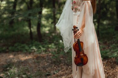 cropped view of girl in dress with flowers holding violin in woods
