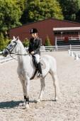 Fotografie Krásné ženské jezdeckých koních koně koně klubu
