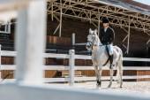 Fotografie Zobrazit přes plot na hezký mužský jezdecké jezdecké koně koně klubu