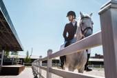 hezký mužský jezdeckých koních koně u plotu na koně klubu