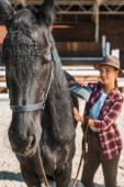 selective focus of attractive cowgirl cleaning black horse with brush at ranch