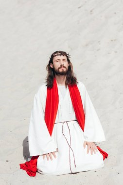 Jesus in robe, red sash and crown of thorns standing on knees with closed eyes and praying in desert stock vector