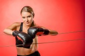 Photo beautiful boxer with boxing gloves leaning on ropes and looking at camera isolated on red