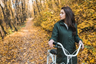 Selective focus of beautiful young woman carrying bicycle in yellow autumnal forest stock vector