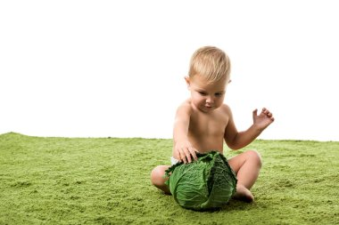 Toddler boy sitting on green carpet with big green cabbage isolated on white stock vector