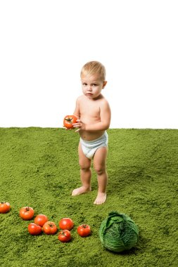 Cute toddler boy holding tomato and vegetables on green carpet stock vector