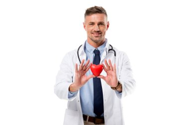 doctor in white coat with stethoscope looking at camera and holding heart model in hands isolated on white, heart healthcare concept