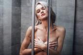 gyönyörű meztelen nő mellét és a fürdőszobában a zuhanyozás pózolt