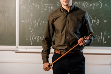 cropped view of male teacher in formal wear holding wooden pointer in front of chalkboard with equations