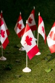selective focus of canadian flags on green grass background