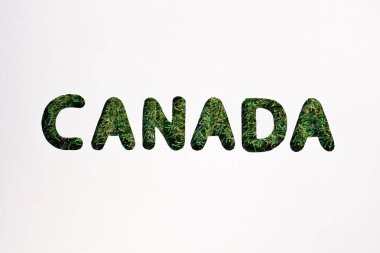 Board with cut out word 'canada' on white background stock vector