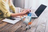 selective focus of small shopping bag in shopping trolley with woman using laptop on background