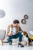 gut aussehender Mann Paket mit Hundefutter und Fütterung Beagle Hund zu Hause