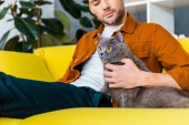 Fotografie handsome man with grey furry cat sitting on sofa at home
