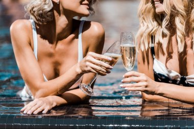 cropped view of women clinking champagne glasses in swimming pool