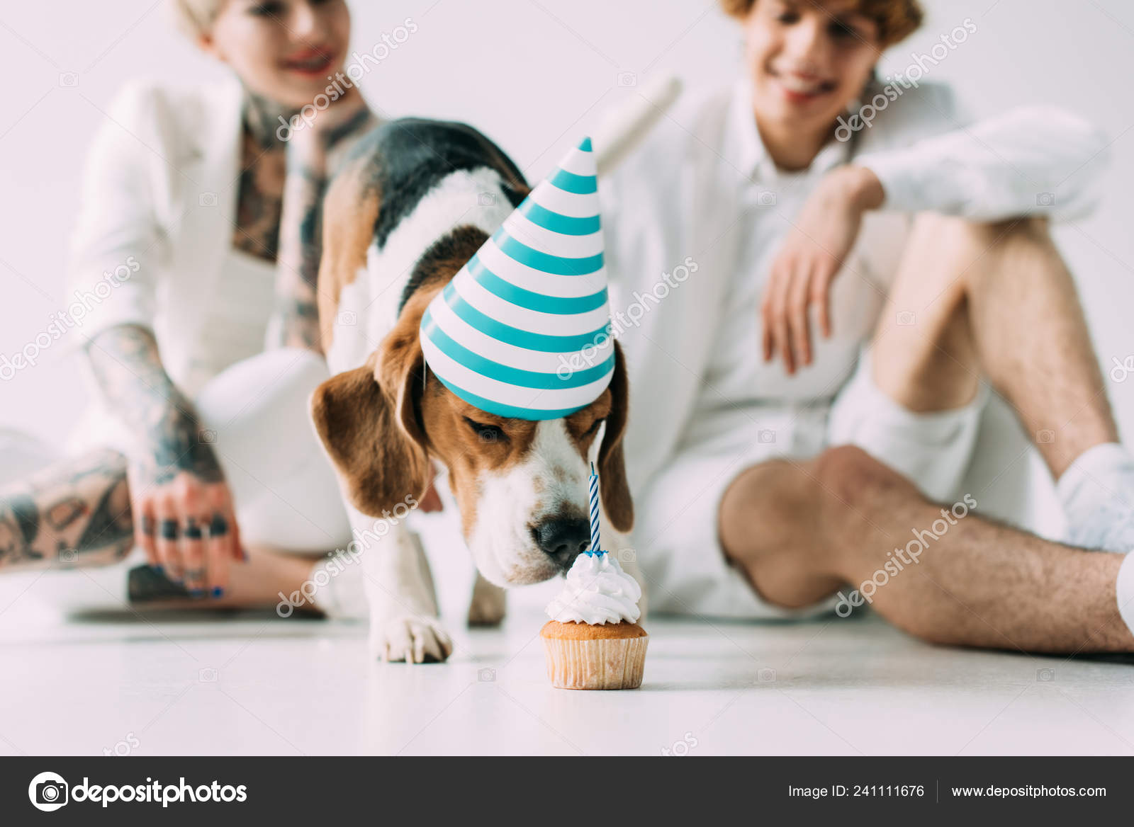 Cute Cupcake Tattoos Selective Focus Cute Beagle Dog Eating Cupcake Man Woman Grey Stock Photo C Vitalikradko 241111676