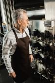 Beruflicher Senior-Brauer im Vorfeld arbeitet in der Brauerei