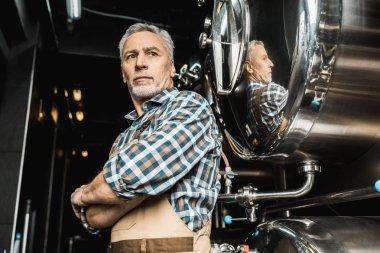 Male senior brewer standing near brewery equipment stock vector