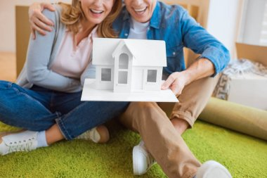 Selective focus happy couple holding house model while sitting on green carpet stock vector