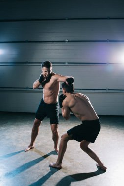 Strong shirtless mma sportsmen fighting while man punching another stock vector