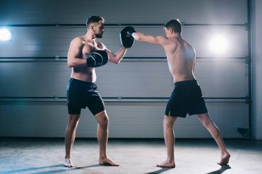 Athletic muscular shirtless boxer practicing punch with another sportsman during training stock vector