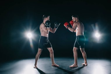 Strong muscular boxers in boxing gloves in stance looking at each other stock vector