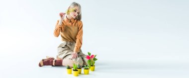 panoramic shot of beautiful stylish girl posing with flower pots and fern leaf on white
