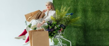 panoramic shot of stylish girl sitting in cart with fern, flowers and shopping bags on white with green grass