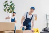 Mover gazdaság üzem és néztem kolléga csomagolás karton doboz celluxot a lakásban