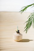Fotografie kokosový koktejl s květinovými a palmovými listy na pláži