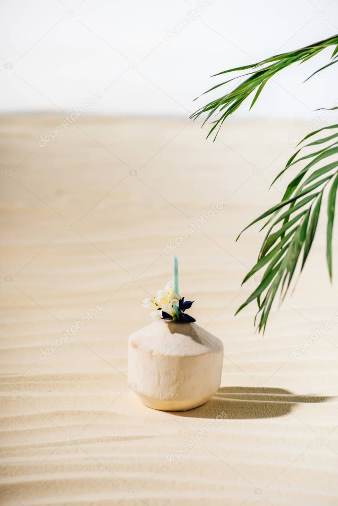 coconut cocktail with flower and palm leaves on beach