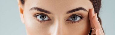 cropped view of young woman with golden eye shadow looking at camera isolated on grey