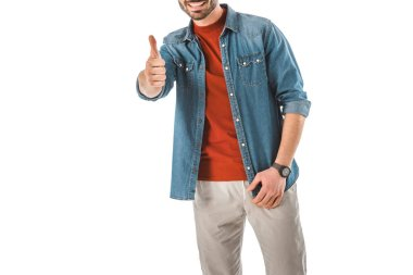 Partial view of man in denim shirt showing thumb up isolated on white stock vector