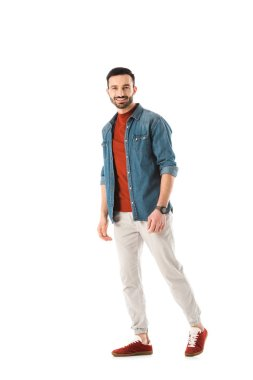 Handsome man in denim shirt smiling and looking at camera isolated on white stock vector
