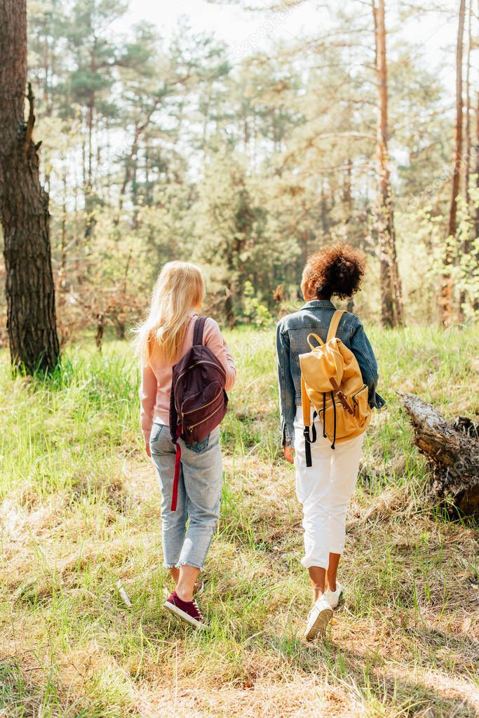 back view of two multiethnic friends with backpacks walking in forest