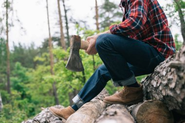 cropped view of lumberer holding ax while sitting on tree trunks in forest