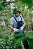 selektivní zaměření zahradníka na chrániče sluchu a pro zastřihování křovin s elektrickým zastřihovačem