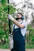 zahradník v helmě, ochranné brýle a chrániče sluchu zastřihování stromů s teleskopickou pilou na zahradě