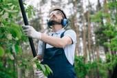 figyelmes Kertész védőszemüveget és a Hallásvédők vágás fák teleszkópos pole látott kertben