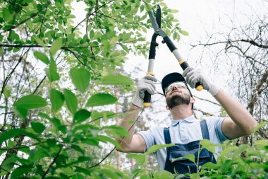 selective focus of gardener in protective glasses and cap pruning bushes with trimmer in park
