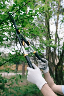 partial view of gardener in gloves pruning trees with trimmer in garden