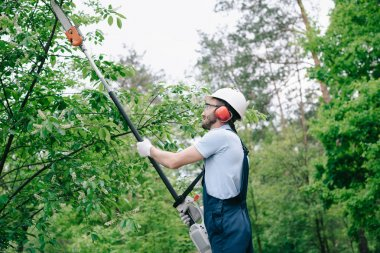 gardener in helmet and overalls trimming trees with telescopic pole saw in garden