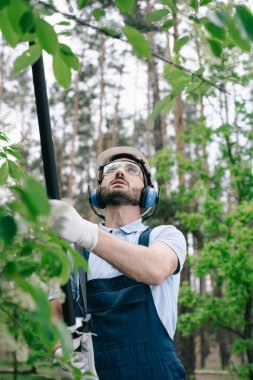 Selective focus of gardener in helmet, protective glasses and hearing protectors trimming trees with telescopic pole saw in garden stock vector