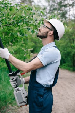 attentive gardener in helmet and protective glasses trimming trees with telescopic pole saw in garden