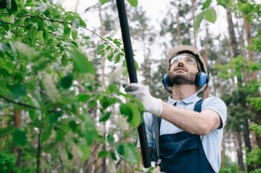 Smiling gardener in helmet, protective glasses and hearing protectors trimming trees with telescopic pole saw in garden stock vector
