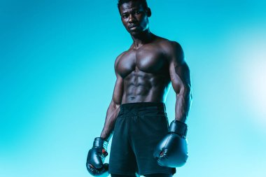 shirtless, muscular african american boxer posing at camera on blue background