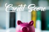 pink piggy bank on wooden desk near credit score lettering in office