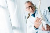 selektivní zaměření lékaře v bílém plášti a skleničkách přidržovat model páteře na klinice