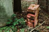 starobylá a rezavá poštovní krabice v blízkosti zelených listů